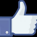 Facebook - Lisca Bianca